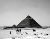 Desert Journey, Egypt - Signed 8 x 10 Fine Art Black and White Photograph from the Pyramids of Giza, Egypt by IlluminatedLuna on Etsy