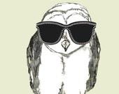 New Shades For Summer - Owl Art - Sunglasses Owl
