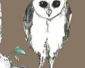 Owl on a Limb Art Print -  Owl Art