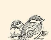 Bird Art Print - Little Chickadees