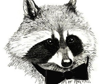 Black Tie - Raccoon Art