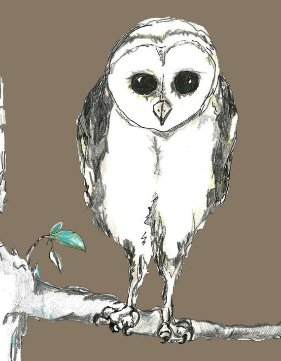 Owl on a Limb Art Print -  Owl Art