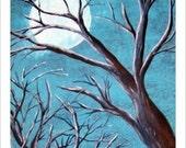 THE STILL OF A WINTERS NIGHT 5x7 GLOSSEY PHOTO PRINT