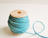 Teal blue cotton bakers twine trim on a wood Spool -15 yards