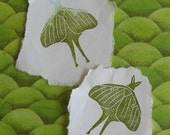 Luna Moth Rubber Stamp Hand Carved