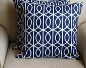 NAVY on white pillow covers 20x20 PAIR