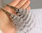 Marabou Feather Drop Earrings -- Black & White Stripe Feathers -- Brass Filigree Cones -- Long Dangle Earrings -- UK Shop