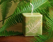 Gardenia Candle Gardenia Fragrance Candle Green Candle Soy Candle Fern Paper Wrap Box Made in Hawaii