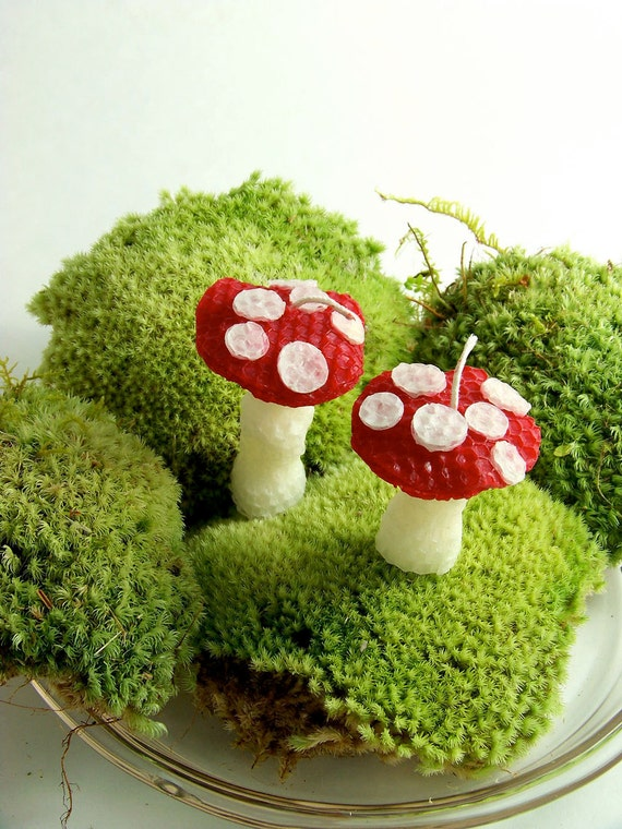 Alice in Wonderland Mushroom Candles 2 Cake Topper Whimsical Toadstool Smurf House  Fairy Gnome Shrooms Woodland Decor