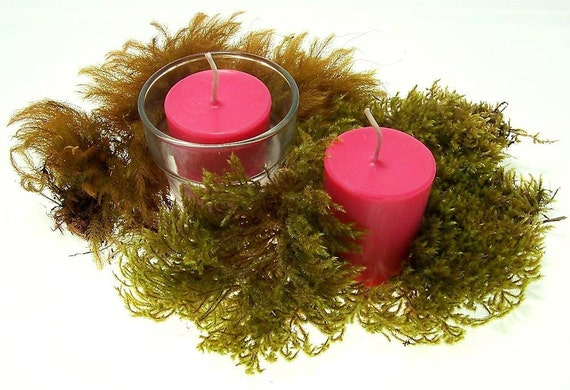 Handmade Candles Soy 4 - 12 Light Red Candle Soy Votives Standard or Large Scented Candles Tuberose Fragrance Made in Hawaii Eco Friendly
