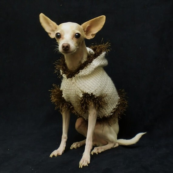 Dog Sweater Hood White Brown Fur Trim Small Hoodie Outfit Chihuahua Small Animal