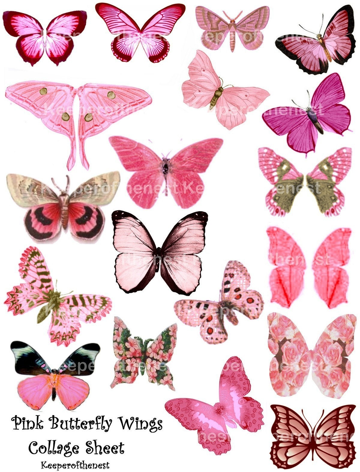 Pink Butterfly Fairy Wings Digital Collage Sheet Altered Art