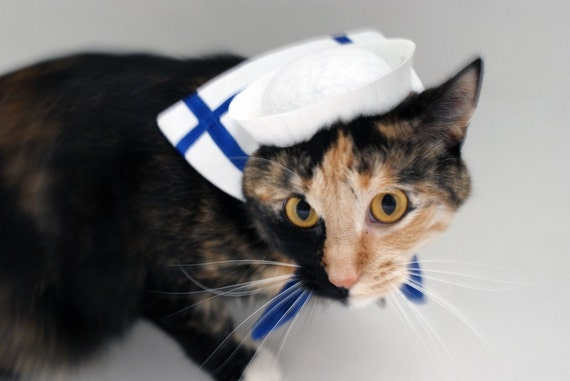 Pet Costume: Little Sailor