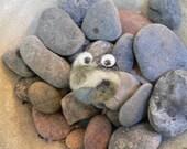 Pet Pebble Wave