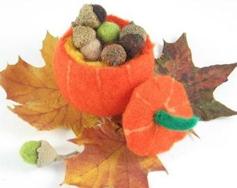 Treasure Pumpkin Wet Felting Waldorf Craft Kit