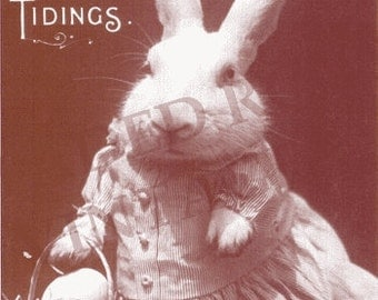 Faded Rose Vintage Image EASTER Greeting Card Great Dressed BUNNY RABBIT Dressed Animal with Egg E2