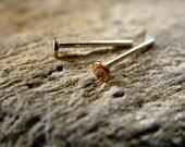 Tiny 14k Gold Fill Post Earrings 2.5mm