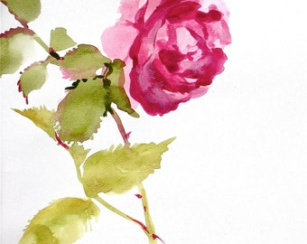 Pink Rose Stem - original painting
