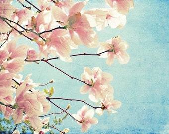 Spring Blossom Photo, Spring Photography, Blue, Pink, Nursery Art, Girls Room, Nature, Pastel, Tree Photo, Spring Tree Photo, Nature Print