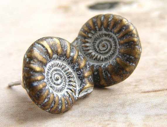 Nautilus Shells - stud earrings