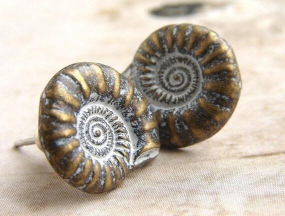 Nautilus Shell Stud earrings, shell post earrings, metal studs natural history shell stud earrings