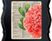 Dictionary Art Print Of A Vintage Peony Illustration