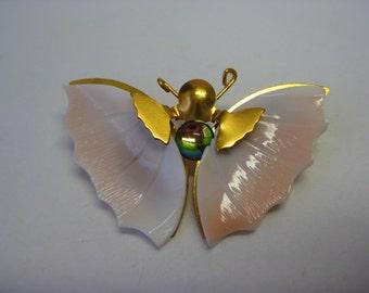 Shell Butterfly - brooch