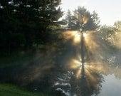 Foggy Sunrise - sknights