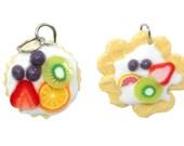 Miniature Foods Polymer Clay Jewelry Supplies Handmade charm 2 pcs