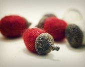 Six Felted Acorns - Your Choice of Colors