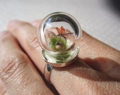 Tiny World of a Dragonfly - OOAK Handmade Ring