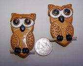 Large Owl Magnet Set for Office or Home 2pc