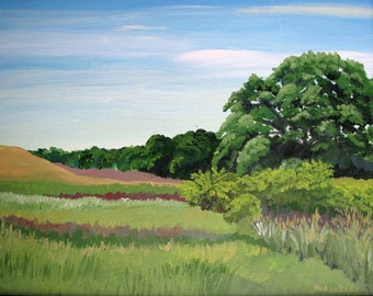 Edith's fields