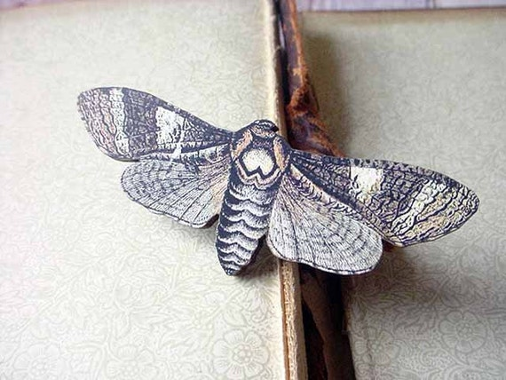 Moth Brooch Neutrals Brown and Beige Butterfly Pin Gift for Collector or Naturalist - Under 10