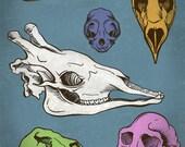 """Animal Skulls Print 8x10"""""""