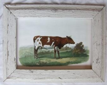 Farm Animal Cow Print Reclaimed Wood Frame  LCP1