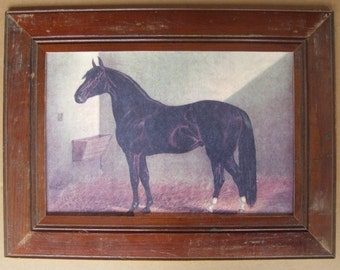 Farm Animal Horse Print Recycled Print Wood Frame HS3