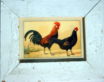 Rooster and Hen Chicken Print Recycled Wood Frame CK7