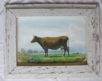 Farm Animal Cow Print Reclaimed Wood Frame  LCP2