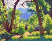 RESERVED for Sylvia Cottonwoods In Spring Oil Canvas 12 x 16  original plein air landscape impressionism