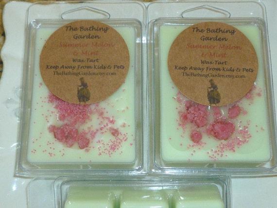 Summer Melon and Mint Wax Tart
