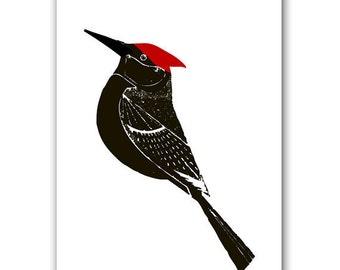 Woodpecker - Fine Art prints black color wall art decor birds