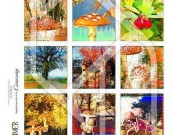 Autumn Indian Summer 2x2 Inch Digital Collage Print Sheet no137