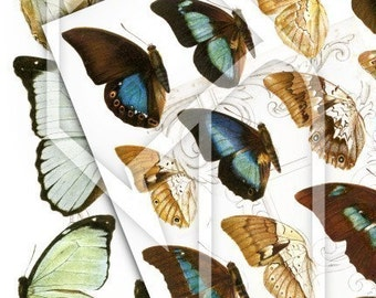 Butterfly Wings Digital Collage Print Sheet no41