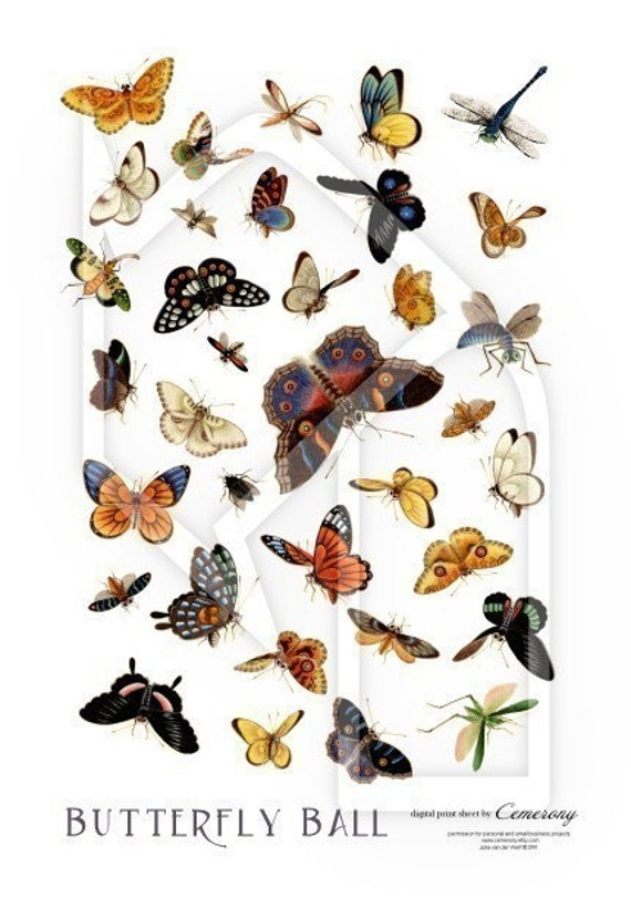 Butterfly Ball Digital Collage Print Sheet no188