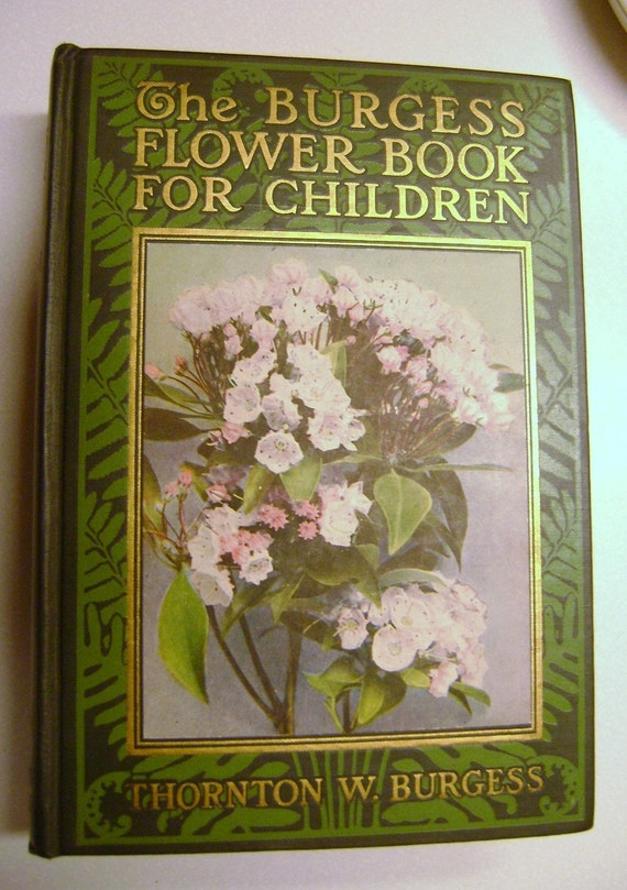 The Burgess Flower Book For Children - Highly collectible - 1923 first edition