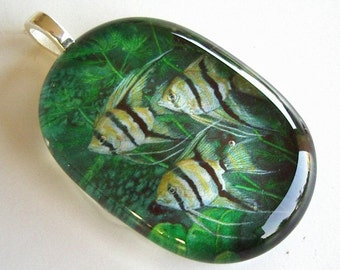 Striped Tropical Angelfish Pendant Jewelry Green Aquarium Art Glass