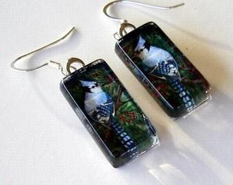 Blue Jay Bird  Jewelry Earrings Art Glass
