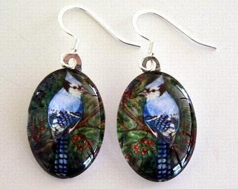 Blue Jay Bird Earrings Oval Art Glass Jewelry School Team Mascot Colored Pencil Art