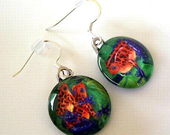 Frog Jewelry Earrings Strawberry Poison Dart Frogs Art Glass
